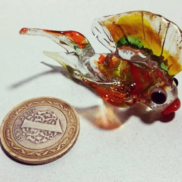 biblo-balık_5
